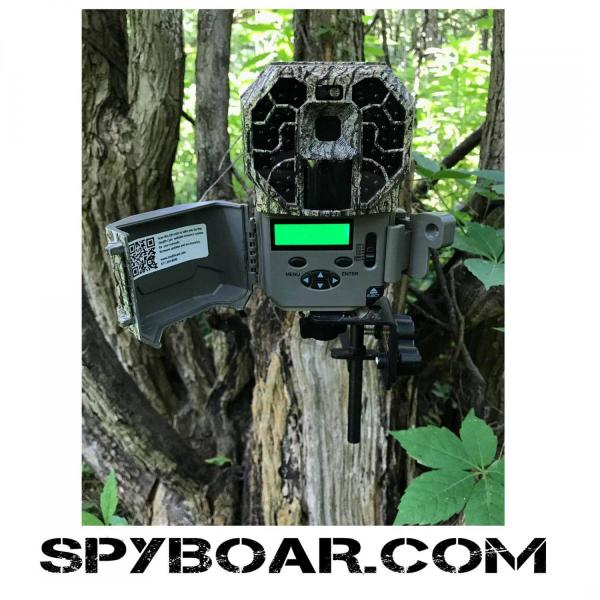 Stealth Cam G45NGX in action